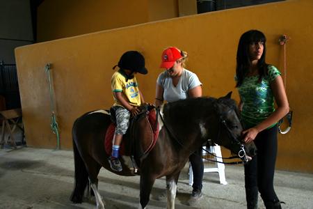 caballo_2.jpg