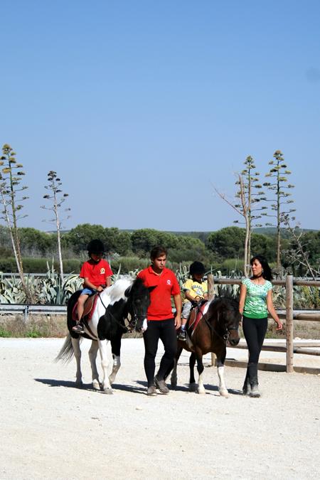 caballo_3.jpg