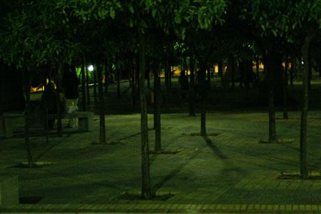 jerez_20080801_4.jpg