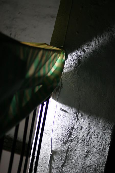 yamori_20110705.jpg