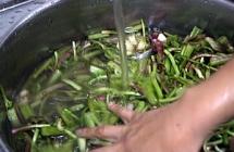 3.野菜を煮る