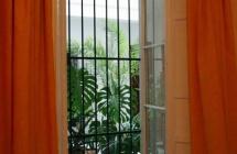 パティオの見える窓